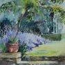 Floraison estivale [Aquarelle - 50 x 40]