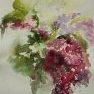 Un lilas qui s'affiche [Aquarelle - 50 x 40]