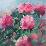 Les rhododendrons [Huile - 40 x 40]