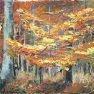 Couleurs d'automne [Etude acrylique - 18 x 24]